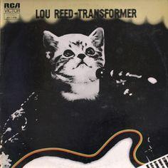 Lou Reed Kitten.