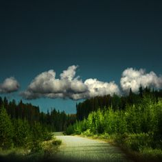 A road less traveled by Soffia Gisladottir