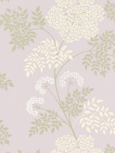 Buy Sanderson Cow Parsley Wallpaper, Amethyst from our Wallpaper range at John Lewis & Partners. Cream Wallpaper, Textured Wallpaper, Fabric Wallpaper, Flower Wallpaper, Wall Wallpaper, Iphone Wallpaper, Osborne And Little Wallpaper, French Lilac, Cow Parsley
