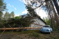 Luonnonvarakeskuksen nettikartasta näkee metsikön tarkuudella pahimmat riskipaikat tuulituhoille.