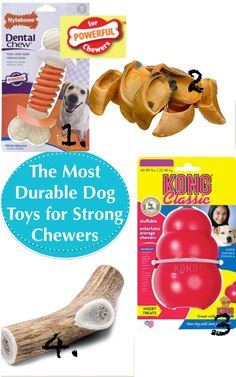 Broke and Bougie: Friday Favs: Dog Toys for Strong Chewers