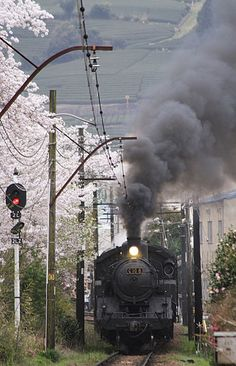 大井川鐵道 桜と蒸気機関車C10_8