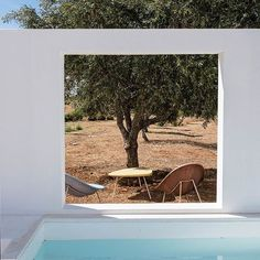Dreaming of poolside olive trees on this freezing Autumn day  @ad_spain #ihavethisthingwitholivetrees #poolside #portugal