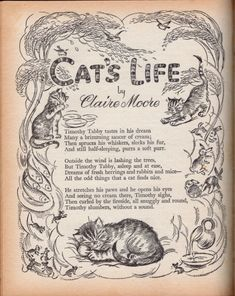 Poems Beautiful, Beautiful Cats, Crazy Cat Lady, Crazy Cats, Poems For Students, Nursery Rhymes Poems, Preschool Poems, Cat Quotes, Fairy Quotes