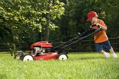 Save Your Lawn, Service Your Lawn Mower: As the summer comes to a close, there are several important things you need to think of to keep your lawn looking fresh and green for the following year.
