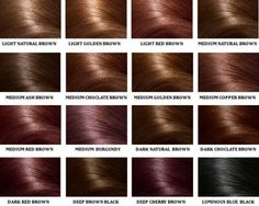 shades of brown hair...I think I might want to try the dark chocolate brown...little lights than what i have now