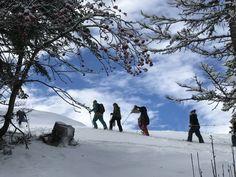 Snowshoe, Mount Everest, Adventure, Mountains, Nature, Travel, Outdoor, Outdoors, Naturaleza
