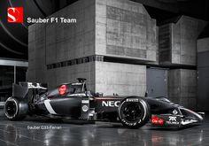 2014 Sauber