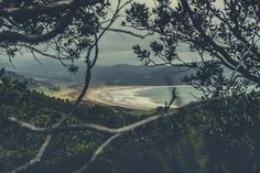 #coromandelpeninsula #newzealand