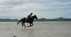 HALF DAY TREKS TO THE ATLANTIC OCEAN. Great Horse riding in Ireland. www.stable-mates.com
