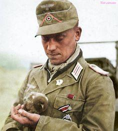 Deutsch Afrikakorps soldier. (DAK) Panzer tank commander.