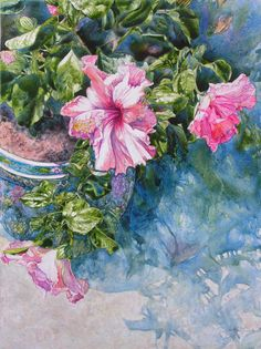 Reaching for Pretty Pink This watercolor was painted on smooth clay board. It depicts a beautiful potted Hibiscus plant on our back porch. The flowers are very large, and are a delicate pink color with a deep dark red center.
