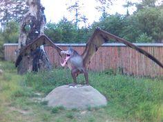 Ma skrzydełka :)i dziób nie byle jaki...lepiej nie podchodzić :)