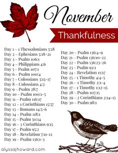 November Bible Reading Plan