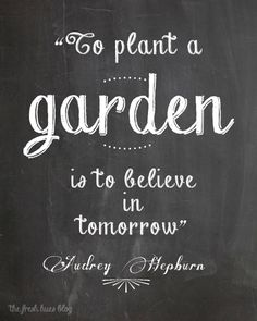 to plant a garden is to believe in tomorrow. photo from fbpage Design Seeds