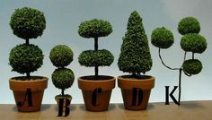 MINIATURE dollhouse TOPIARY - Google Search