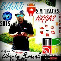 Bujji Niggas By Liberty Bwanali #USAFEATURE #SMTracks 2015 FREE DOWNLOAD by Liberty Bwanali on SoundCloud