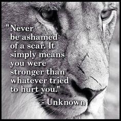 Love this quote with the lion