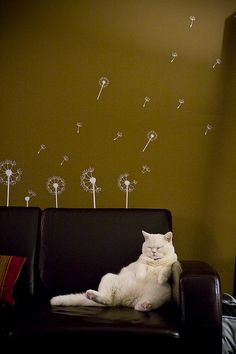 bring me a martini dry extra olives.  I love the dandelions on the wall