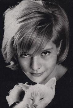 Sylvie Vartan - I was a fan Jean Seberg, Carole Lombard, Catherine Deneuve, Meryl Streep, Maurice Careme, Vartan Sylvie, Dalida, Cat Toilet, Son Chat