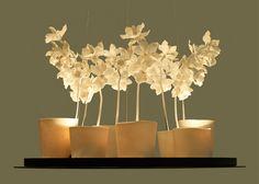 Cymbidium Chandelier by Jeremy Cole  - (re) Pinned by www.westpointorchids.com