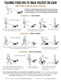 Dog Training Tips - CLICK THE PICTURE for Various Dog Care and Training Ideas. #doglovers #dogcommandstraining