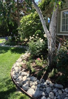 If you live in a dry and arid climate then your desert landscaping is going to take a little more planning than some other parts of the country. desert landscaping will have to work with a plan that includes only plants and trees that River Rock Landscaping, Landscaping With Rocks, Front Yard Landscaping, Arizona Landscaping, Diy Garden, Garden Edging, Home And Garden, Cacti Garden, Garden Care
