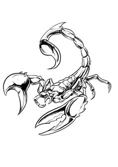 Zodiac Tattoo Designs: Scorpio