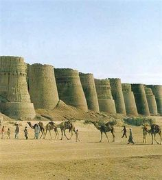 Cholistan - Pakistan