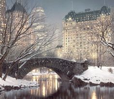 NYC Central Park in winter/christmas