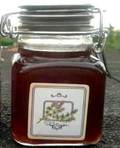 webcam - The World`s Most Visited Video Chat Creamed Honey, Healthy Style, Food Humor, Health Advice, Natural Medicine, Kraut, Health Remedies, Eat Cake, Sweet Recipes