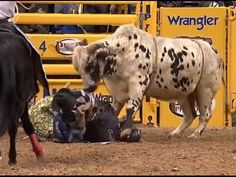 04-10 NFR Bull Riding Wrecks & Close Calls It wouldn't be bull riding without its share of wrecks and close calls. Its not nicknamed the most dangerous sport for nothing.