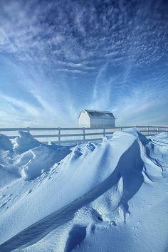 Winter | by Phil Koch