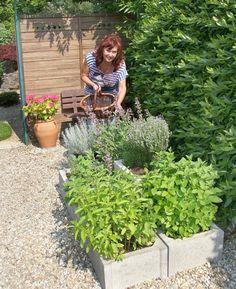 Outdoor Living, Garden, Plants, Outdoor Life, Garten, Lawn And Garden, Gardens, Plant, The Great Outdoors