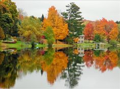 Intermediate Lake In Central Lake, Michigan. Photo Taken by Amy Drake on October 16, 2014.