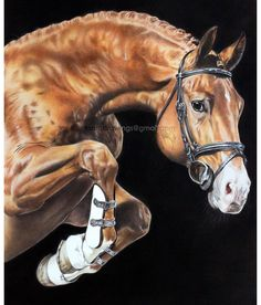 """Mi piace"": 772, commenti: 3 - Horse Art (@horseart_featuring) su Instagram: ""Outstanding drawing by @ksart_drawings so gorgeous!!!#horse #horseart #equineart #horses…"""