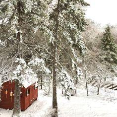 Maine in Winter Cape Neddick, Milk Paint, Retail Shop, Repurposed Furniture, Maine, Coastal, Shops, Antiques, Winter