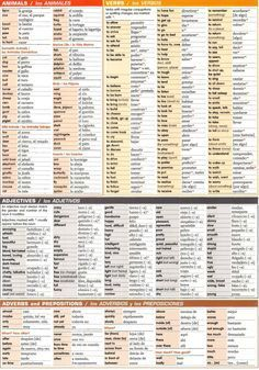 Spanish grammar chart-Animals, verbs, adjectives, adverb and prepositions