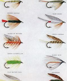 Klink and dink new zealand style klinkhamer nymph for Types of fly fishing flies