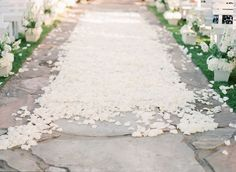 Rose petal center aisle - wedding ceremony details - Ashley Upchurch Photography Rose Petals, Wedding Ceremony, Sidewalk, Photography, Pink Petals, Photograph, Rose Flowers, Photography Business, Hochzeit