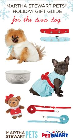 Add a little sparkle to your morning walk. More #marthastewartpets gift ideas for your diva dog. Available @petsmartcorp