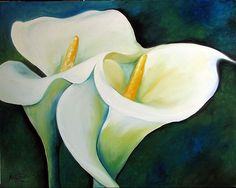 ELEGANT CALLA LILY by Marcia Baldwin. Love this artist
