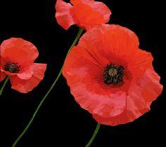 Printed on a photoblock. Photo Blocks, Painting Flowers, Poppies, Website, Printed, Digital, Art, Art Background, Kunst