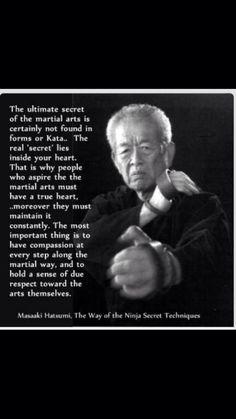 Masaaki Hatsumi, Way of the Ninja Secret Techniques