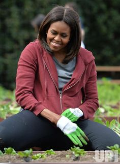 lady michelle obama planting the white house garden Michelle Und Barack Obama, Michelle Obama Fashion, Barack Obama Family, Presidents Wives, Black Presidents, First Black President, Our President, Obama Family Pictures, American First Ladies