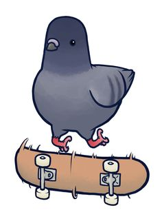 Pign by Guacamole Greg • who else now wants to give all the pigeons in London teeny lil skateboards and see if the next day they all be riding around...? #SK8