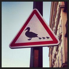 Panneau attention à la famille canard !