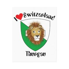 Schweiz  Suisse  Switzerland Thurgau Galerie Falt Leinwand
