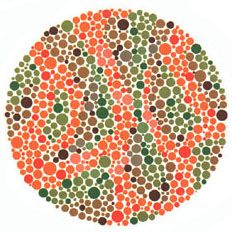 Ishihara's Test for Colour Deficiency: 38 Plates Edition – Colblindor Eye Sight Test, Color Blindness Test, Eye Tricks, Color Vision, Anti Aging Cream, Illusions, Plates, Colour, Colorado