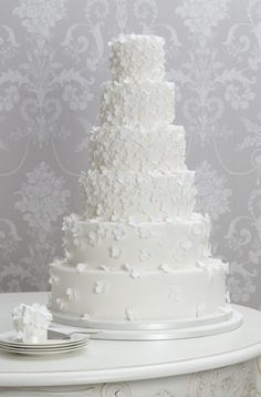 Wedding Cake Inspiration - Zoë Clark Cakes - G - Wedding = From (A) - (Z) - . - Wedding Cake Inspiration – Zoë Clark Cakes – G – Wedding = From (A) – (Z) – - White Wedding Cakes, Elegant Wedding Cakes, Beautiful Wedding Cakes, Wedding Cake Designs, Beautiful Cakes, Mod Wedding, Dream Wedding, Spring Wedding, Daisy Wedding